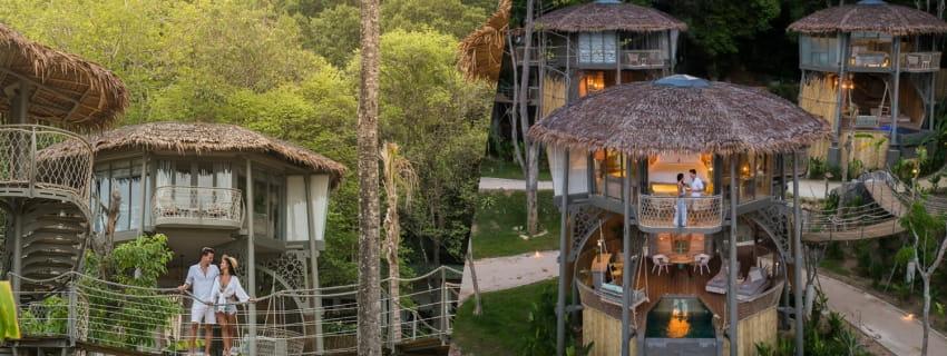 TreeHouse Villas,พังงา